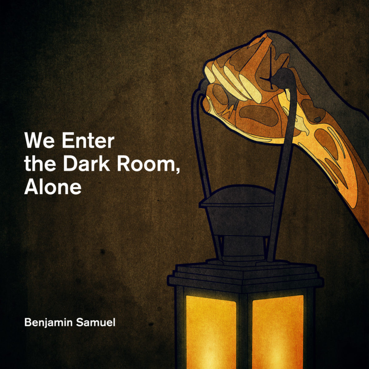 We Enter the Dark Room, Alone